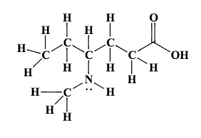 convert the following structural formula into the carbon skeleton formula otherwise known as a kekul structure