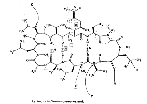 The Structure Of Cyclosporin Is Given Belo