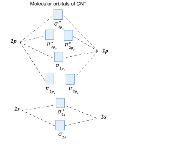 Solution Complete This Molecular Orbital Clutch Prep