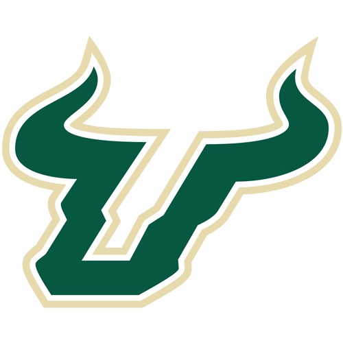 University of South Florida  - USF