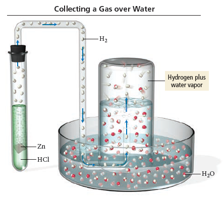 Collecting a Gas over Water: The metal zinc is placed in a testtube containing hydrochloric acid. The testtube is connected to a tube that runs into a submerged beaker. The beaker is submerged upside down over water such that teh vapor from the testtub can be collected.