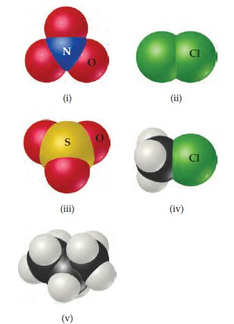 (i) A central N is bonded to three Os. (ii) Cl is bonded to Cl. (iii) A central S is bonded to three Os. (iv) Cl is bonded to CH3. (v) CH3 is bonded to CH2 which is bonded to CH3.