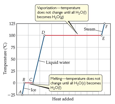 A graph has heat added on the x-axis (unscaled, increasing) and temperature in degrees C on the y-axis, ranging from negative 25 to 125 with intervals of 25. The line plotted is divided into lines AB, BC, CD, DE, and EF as water goes through phase changes as heat is added, changing from solid ice, to liquid water, to steam. Line segment AB goes from negative 25 to zero degrees and the phase is cce (solid). Line segment BC is at zero degrees but correlates to Phase change: Horizontal line.  Melting, temperature does not change until all H2O (solid) becomes H2O (liquid). Line segment CD extends from o to 100 degrees and the phase is water (liquid). Line segment DE is at 100 degrees and Phase change: Horizontal line. Vaporization, temperature does not change until all H2O (liquid ) becomes H2O (gas). Line segment EF extends from 100 to 125 degrees and the phase is steam (gas).