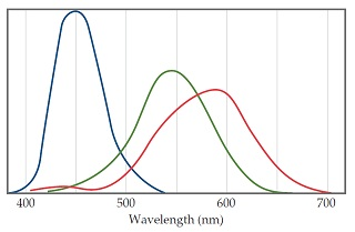A graph shows wavelength (nanometers) on the X-axis, and has three curves.  One is a narrow hump that peaks at 450 nanometers, one is a broad peak at 540 nanometers, and the third is a very broad peak at 590 nanometers.
