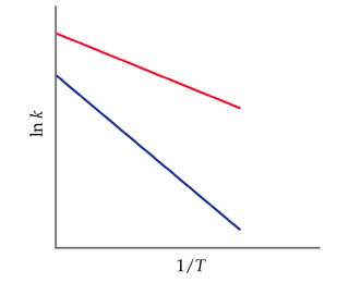 A graph of natural log k versus 1 divided by T (both unscaled) shows a red and blue line that both decline linearly. The red line starts higher on the y-axis and its slope is flatter.