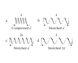 The figure shows four springs. Spring, labelled as a, has a constant k and is compressed by a distance d. Spring, labelled as b, has a constant k and is stretched a distance d. Spring, labelled as c, has a constant 2 times k and is stretched a distance d. Spring, labelled as d, has a constant k and is stretched a distance 2 times d.