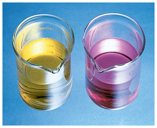 The left beaker contains a yellow solution and the right beaker contains a purple/pink solution.