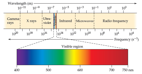 The diagram shows the electromagnetic spectrum. Gamma rays have a wavelength of less than 10 to the power of negative 11 meters. X rays have a wavelength of between 10 to the power of negative 11 meters and 10 to the power of negative 8 meters. The ultraviolet region has a wavelength of between 10 to the power of negative 8 and 400 nanometers. The visible region is between 400 and 750 nanometers. The infrared region is between 750 nanometers and 5 times 10 to the power of negative 4 meters.  Microwaves have a wavelength of between 5 times 10 to the power of negative 4 meters and 10 to the power of negative 1 meters. The radio frequency region is more than 10 to the power of negative 1 meters.