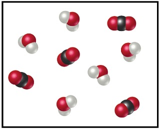 5 H2O and 4 CO2 molecules.