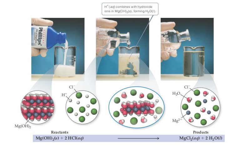 A series of photographs shows the overall reaction of the reactants Mg(OH)2 (solid) plus 2 HCl (aqueous) going to the products MgCl2 (aqueous) plus 2 H2O (liquid). In the first photograph, milk of magnesia (Mg(OH)2) is poured into a beaker, appearing opaque. In the second photograph, an aqueous solution of H+ and Cl- ions is added to the beaker.  H+ (aqueous) combines with hydroxide ions in Mg(OH)2 (solid), forming H2O (liquid). In the third photograph, the beaker appears mostly translucent, with H2O molecules and Mg2+ and Cl- ions in solution.