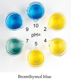 Bromthymol blue is yellow at pHs 2,4, and 5, green at pH 7, and blue at pHs 9 and 10.