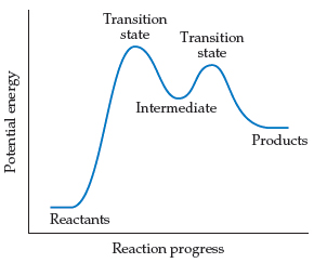 A graph has reaction progress on the x-axis and potential energy on the y-axis. Both axes are unscaled.  Potential energy increases from the reactants to two peaks that are each a transition state with a trough between them that is the intermediates. The first peak is higher than the second. After the second transition state, potential energy declines to the products, which have higher potential energy than the reactants.