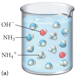The figure labeled A shows a beaker filled with a solution which contains 2 molecules of OH minus, 11 molecules of NH3 and 2 molecules of NH4 plus.