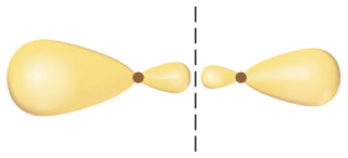 Two hybridized orbitals are shown, each with one small and one large lobe separated by a dot. The orbitals are arranged side-by-side, with their small lobes nearest each other.  A dashed line separates them.