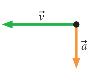 The figure shows two vectors starting from the same point. Velocity vector v points horizontally to the left and acceleration vector a points vertically downward.