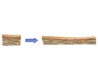A diagram shows that when a disorganized square of fibers is stretched, the fibers generally align lengthwise.
