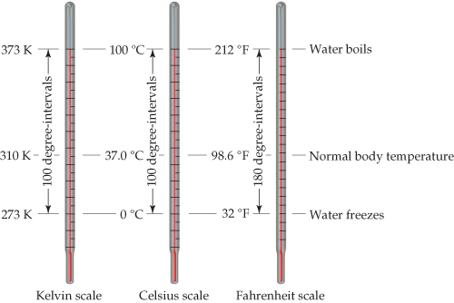 On the Kelvin Scale and Celsius Scale the graduation lines are spaced identically, and the linear distance describing a 100 degree interval is the same and equivalent to a 180 degree interval on the Fahrenheit scale, which also has differently spaced graduations. The diagram is described below. Water freezes at 273 kelvin, 0 degrees celsius, and 32 degrees fahrenheit. Normal body temperature is considered to be at 310 kelvin, 37 degrees celsius, and 98.6 degrees fahrenheit. Water boils at 373 kelvin, 100 degrees celsius, and 212 degrees fahrenheit.