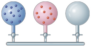 An apparatus shows three vessels of the same size opening to horizontal tube. Molecules of different gases are in the first two vessels; the third is empty.