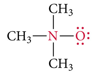 Three CH3 groups and an O atom are attached to an N atom with single bonds. The O atom has three lone pairs.
