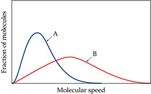 A graph shows fraction of molecules versus molecular speed for gases A and B. Gas A peaks higher and to the left of gas B. The x axis is molecular speed and the y axis is fraction of molecules (both axes are unscaled). Gas A rises to a peak about two-thirds of the way up the y axis with the peak at about one quarter the length of the x axis. Gas B rises to a broad, lower peak about one third of the way up the y axis and about halfway across the x axis.