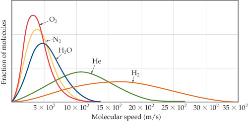 A graph has molecular speed in meters per second on the x-axis, ranging from 5 times 10 square to 35 times 10 square. The y-axis is fraction of molecules, unscaled. Curves are plotted for O2, N2, H2O, Helium and H2. The curve for O2 rises sharply to a steep peak, the highest of any gas, at about 3 times 10 square meters per second, before decreasing to near zero by 10 times 10 square. The curve for N2 is similar to O2, but rises to a lower peak and is shifted very slightly right. The curve for H2O is broader, lower, and again shifted slightly right. The curve for Helium is much lower and broader still, rising to a peak only about one third the height of the O2 peak at around 10 times 10 square meters per second, declining slowly to near 0 by about 25 times 10 square meters per second. The curve for H2 is even lower and broader, peaking around 20 times 10 superscript 2 meters per second, and declining to near 0 around 35 times 10 squared meters per second.