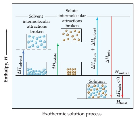 Two diagrams have enthalpy, H (increasing, unscaled) on the y-axis and show delta H for the solute, solvent, mix and solution for both an exothermic and endothermic solution process. Exothermic solution process: A horizontal line about 1/3 of the way up the y-axis is Hinitial. Delta Hsolvent is the increase in enthalpy from delta Hinitial to halfway up the y-axis as solvent intermolecular attractions are broken. Similarly, delta Hsolute is the increase in enthalpy from Hinitial to a point a bit higher than delta Hsolvent as solute intermolecular attractions are broken. Delta Hsolvent plus delta Hsolute is an increase in enthalpy from Hinitial  to near the top of the y-axis. Delta Hsolution is less than 0, and is the decrease in enthalpy from Hinitial to near the bottom of the y-axis at Hfinal. Delta Hmix is the change in enthalpy from delta Hsolvent plus delta Hsolute to Hfinal.