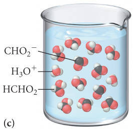 The figure labeled C shows a beaker filled with a solution which contains 2 molecules of H3O plus, 2 molecules of CHO2 minus, and 10 molecules of HCHO2.
