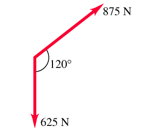 Two vectors are shown, they start at the same point. The first vector is 625 newtons long. The second vector is 875 newtons long. The second vector is 120 degrees counterclockwise from the first vector.