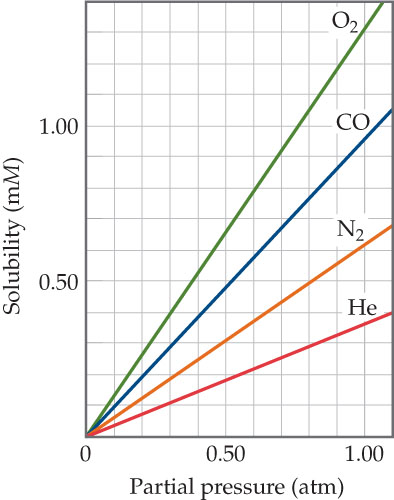 A graph has partial pressure (atmospheres) on the x-axis, ranging from 0 to 1.00 with intervals of 0.50. Solubility (millimoles) is on the y-axis, ranging from 0 to 1.0 with intervals of 0.50. O2 has a  solubility  of 0 millimoles at 0 atmospheres , 0.70 at  0.50 atms, and 1.3 mmols at 1.00 atms. CO has a solubility of 0 mmols at 0 atms, at  0.50 mmols at  0.50 atms, and 1.00 mmols  at 1.00 atms. N2 has a solubility of 0 mmols at 0 atms, 0.30 mmols at 0.50 atms, and 0.60  mmols at 1.00 atms. He has a solubility of 0 mmols at 0 atms, 0.20 mmols at 0.50 atms, and 0.40  mmols at 1.00 atms.