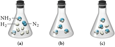 Three flasks: a, b, and c. Flask a contains two NH3 molecules, each depicted as a blue sphere combined with three smaller white spheres, and also contains one N2 molecule, depicted as two blue spheres combined, and five H2 molecules, each depicted as two smaller white spheres combined. Flask b contains four NH3 molecules, each depicted as a blue sphere combined with three smaller white spheres. Flask c contains four  NH3 molecules, each depicted as a blue sphere combined with three smaller white spheres as well as two H2 molecules, each depicted as two smaller white spheres combined.