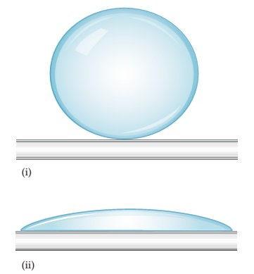(i) A liquid sphere sits on a flat surface. (ii) A liquid spreads out broadly over a flat surface, forming a dome shape.