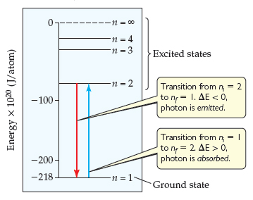 The ground state is n equals 1, at an energy of -218 times 1020 joules per atom. The energy at n equals 2 is much greater, at around -80 times 1020 joules per atom.  The jump to n equals 3 is smaller, at around -40 times 1020 joules per atom, and n equals 4 is around -25 times 1020 joules per atom. A level of 0 energy is at n equals infinity.  All states 2 and higher (every state except the ground state, n equals 1) are excited states.  The transition from ni equals 2 to nf equals 1 has a delta-E less than 0, meaning a photon is emitted. The transition from ni equals 1 to nf equals 2 has a delta-E greater than 0, meaning a photon is absorbed.