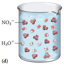 The figure labeled D shows a beaker filled with a solution which contains 12 molecules of H3O plus and 12 molecules of NO3 minus.