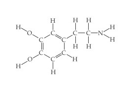 The structure of benzene is a six-carbon hexagon arranged with its points up and down.  The sides of the hexagon are alternating double and single bonds, with the left side being the first double bond.  The top and bottom point and lower right vertex are all single bonded to H.  The upper and lower left vertices are single bonded to OH.  The upper right vertex is single bonded to C, which is single bonded above and below to H and right to C.  That C is single bonded above and below to H and right to N, which is single bonded to two Hs.