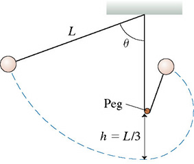 A figure shows a pendulum consisting of a ball at the end of a string of length L. A peg is placed at the height of L divided by 3 above the lowest point of the pendulum. When the ball reaches and passes this peg, it swings upward as a pendulum with the string length of L divided by 3.