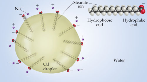 A diagram shows a round oil droplet ion in water. The oil droplet is composed of a ring of stearate ions that consist of a long hydrophobic end (a hydrocarbon chain) and a hydrophilic end (COO-). The stearate ions are arranged in the oil droplet so that the COO- ends face water and the hydrophobic ends are inside the droplet, away from water. Na+ is attracted to the COO- ends of the oil droplet.
