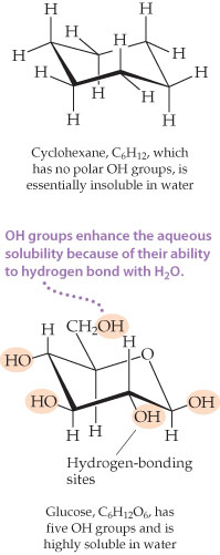Cyclohexane, C6H12, which has no polar OH groups, is essentially insoluble in water. Cyclohexane is a six-membered ring with carbon as all of its vertices. Each carbon is also single bonded out of the ring to two H atoms. Glucose is also a six-membered ring, but it has carbon at five of its vertices and O as the final vertex. Attached to the ring are five OH groups, which are hydrogen-bonding sites. In glucose, the OH groups enhance the aqueous solubility because of their ability to hydrogen bond with H2O.