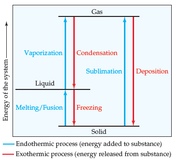 A diagram has energy on the y-axis, (increasing and unscaled). Gas is highest energy, followed by liquid and then solid (lowest energy). Phase change from solid to liquid occurs by melting or fusion and is an endothermic process (energy is added to the substance). Phase change from liquid to solid occurs by freezing and is an exothermic process (energy is released from the substance). Phase change from solid to gas occurs by sublimation and is endothermic, while phase change from gas to solid occurs by deposition and is exothermic. Phase change from liquid to gas occurs by vaporization and is endothermic, while phase change from gas to liquid occurs by condensation and is exothermic.
