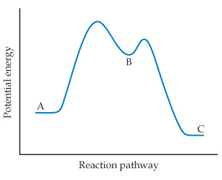 A graph has reaction progress on the x-axis and potential energy on the y-axis (both axes unscaled). The curve rises from the initial state to a two peaks with the first peak higher than the second and then declines to the final state. (A) is the initial state; (B) is the trough between the two peaks, and (C) is the final state, which is lower energy than (A).