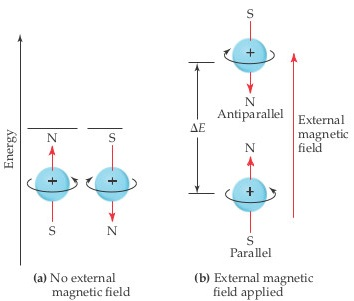 a) No external magnetic field.  A diagram shows an electron spinning clockwise with S above and N below, while an electron spinning counterclockwise has N above and S below.  Both are at the same energy. b) External magnetic field applied.  A diagram shows the same electrons, but with an external magnetic field, the clockwise electron (S above, N below) is at an increased energy and the counterclockwise electron (N above, S below) is at a somewhat decreased energy.  The difference in energy is delta-E.