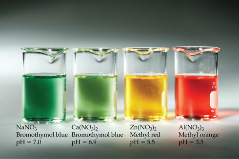 A photograph shows beakers of different colors at different pHs. Beaker one contains a dark green solution of sodium nitrate and the indicator bromthymol blue at pH 7.0.  Beaker two contains a light green solution of calcium nitrate and the indicator bromthymol blue at pH 6.9.  Beaker three contains a yellow solution of zinc nitrate and the indicator methyl red at pH 5.5.  Beaker four contains a red solution of aluminium nitrate and the indicator methyl red at pH 3.5.