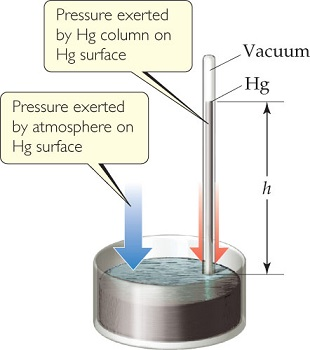 A diagram shows a glass tube filled with mercury and inserted into a dish of mercury. Pressure is exerted on the surface of the mercury by the atmosphere and by the mercury in the tube. The mercury in the tube rises to height h; above the mercury in the tube is vacuum.