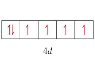 The 4d subshell contains five orbitals.  The first has two arrows, one pointing up and one pointing down.  The remaining orbitals all contain one arrow, each pointing up.