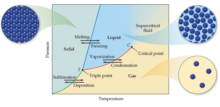 Solid phase is at the left of the diagram (low temperature and ranging from low to high pressure). Below the triple point, T, which separates solids, liquids and gases, at low temperature and pressure, sublimation moves solids to gas and deposition moves gas to solid. Above the triple point, at higher pressure and medium temperature, melting moves solids to liquids and freezing moves liquids to solids. The vapor pressure curve increases from the triple point T to the critical point, C, at higher temperature and pressure. Above the critical point, liquid and gas converge to become a super critical fluid. Liquids vaporize across the vapor pressure curve to gas and gases condense across the vapor pressure curve to liquid.