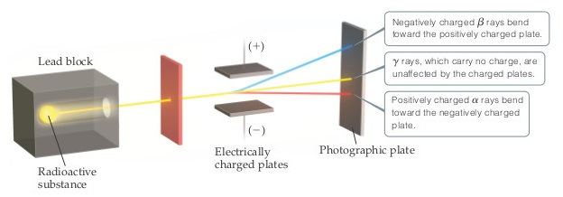 A beam is emitted from a radioactive substance within a lead block. It passes through a small aperture in a vertical plate and then between two electrically charged plates (one plate is positively charged and the other plate is negatively charged). As the beam passes through the electrically charged plates the different types of rays are split. Negatively charged beta rays bend toward the positively charged plate. Gamma rays, which carry no charge, are unaffected by the charged plates and continue in a straight line. Positively charged alpha rays bend toward the negatively charged plate.