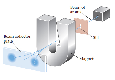 A diagram shows a beam of atoms traveling through a thin vertical slit and passing between the arms of a U-shaped magnet.  A beam collector plate shows that atoms are deflected either left or right after the magnet.