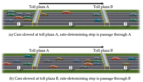 In both diagrams below, point 1 is just before Toll Plaza A, point 2 is between plazas A and B, and point 3 is just past toll plaza B. (a) Cars slowed at toll plaza A. The rate-determining step is passage through A to proceed to toll plaza B (the diagram shows congestion at the first toll plaza, A). (b) Cars slowed at toll plaza B. The rate-determining step is passage through B (the diagram shows congestion at the second toll plaza, B).