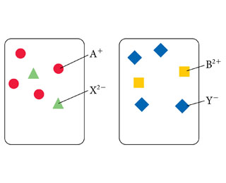 Two solutions, the solution on the left contains four red circles labeled A+, and two green triangles labeled X2-. The solution on the right contains two yellow squares labeled B2+ and two blue diamonds labeled X-.