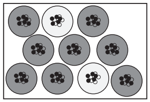 Ten boron nuclei are depicted. Eight of which (shaded dark gray) have five protons (white circles) and six neutrons (black circles), and two nuclei (shaded light gray) have five protons (white circles) and five neutrons (black circles).