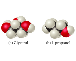 Glycerol has three OH groups attached to the hydrocarbon chain while 1-Propanol has only one OH group on a terminal carbon.